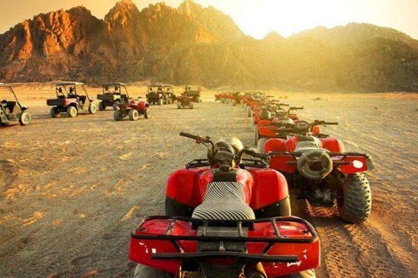 quad-safari
